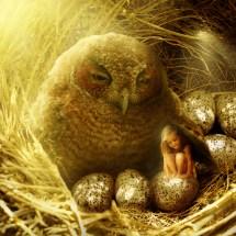 Owl child 3