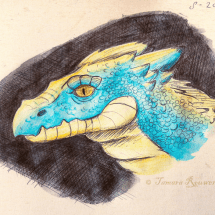There be dragons here_texture