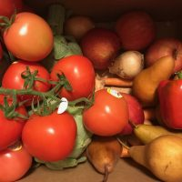 First Imperfect Produce Box Tamara Rubin