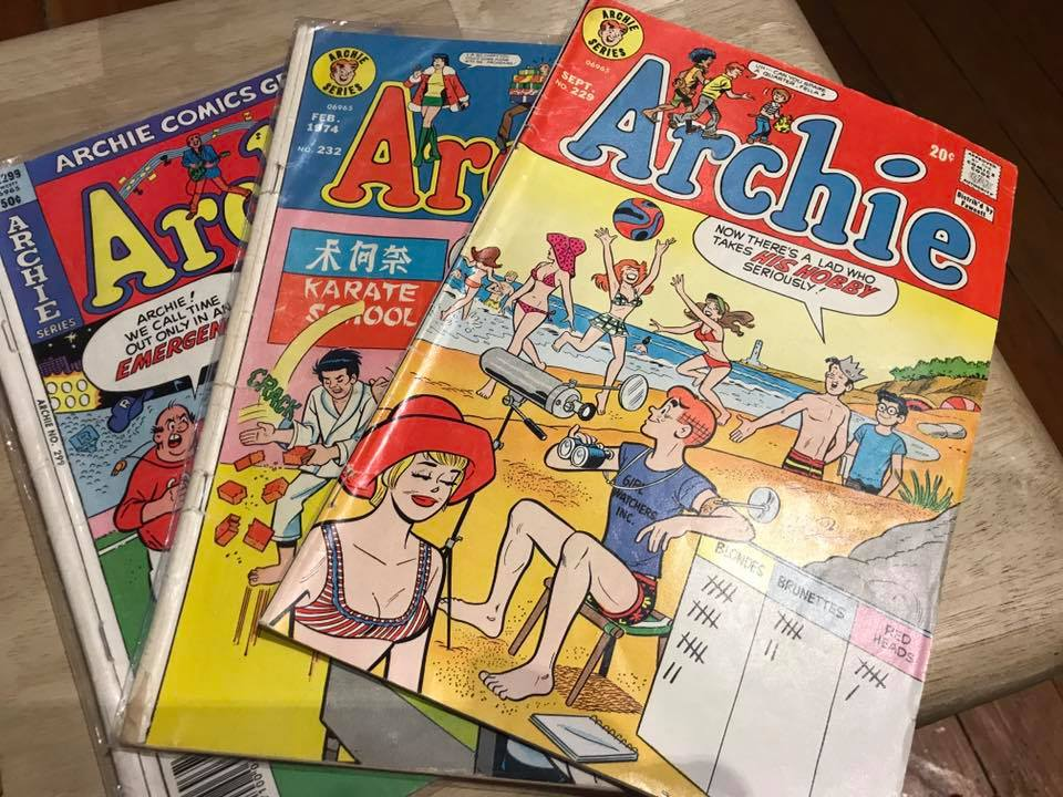 Vintage 1970s Archie Comics Tamara Rubin Lead Safe Mama