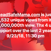 Almost 1000000 views LeadSafeMama Tamara Rubin
