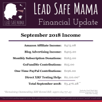 September 2018 Financial Update Lead Safe Mama Income