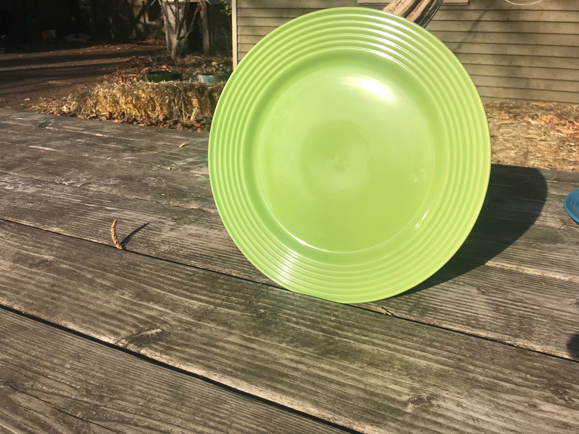 "2018 Dollar Tree Store Royal Norfolk Green Glazed Ceramic Plate With Ridges: 31 ppm Lead (""Lead Safe"")"