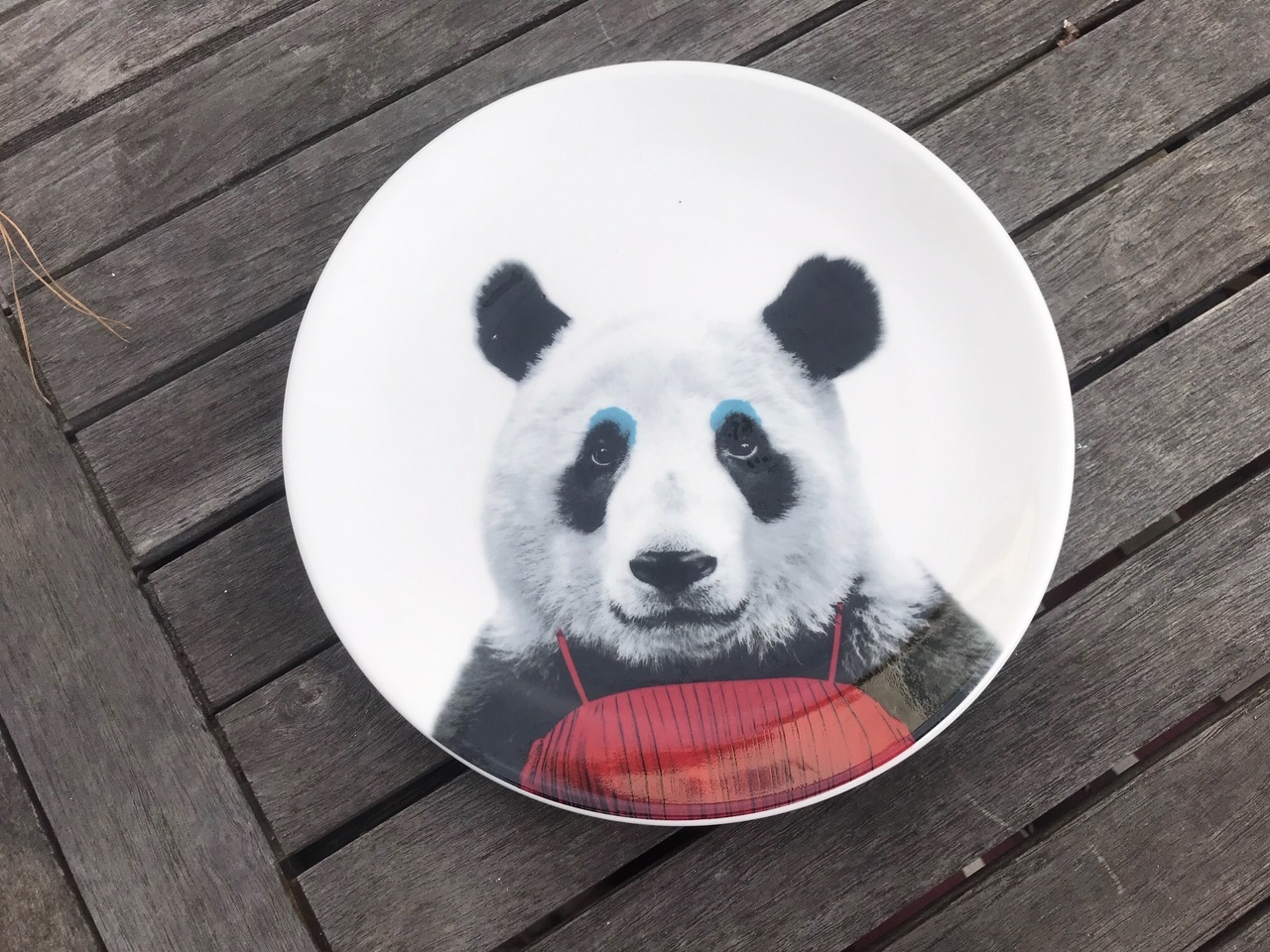 "New Wild Dining ""JustMustard"" Brand Patricia Panda Plate: 28,800 ppm Lead when tested with an XRF instrument."