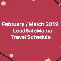 February March 2019 Lead Safe Mama Travel Schedule