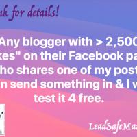 Blogger Promotion Idea