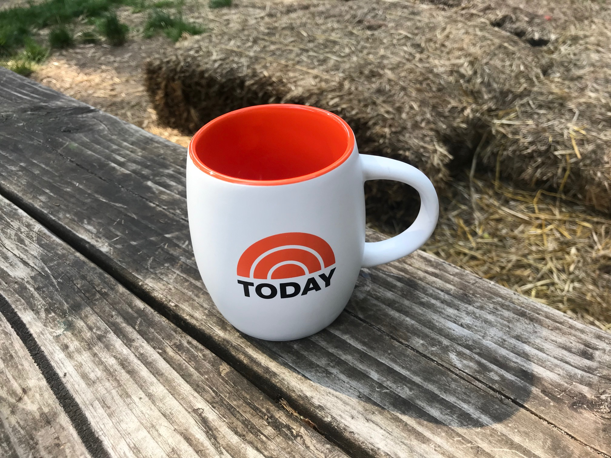 """Talk Show """"Set Mugs"""" Series (Used By Hosts & Guests) Today Show: 830 ppm Cadmium (75 ppm Cd is illegal in Denmark)"""