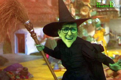 BB16 Witch Christine EarthDog