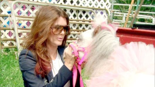 Real Housewives of Beverly Hills Recap: Pony Shows and Marital Woes