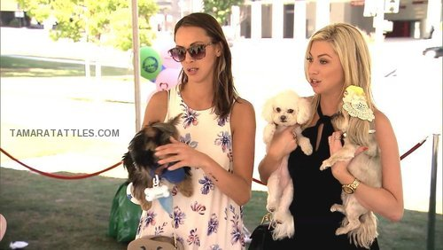 pump-rules-kristen-stassi