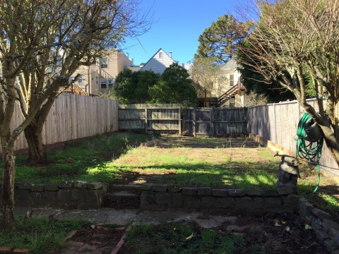 Before backyard landscaping