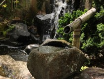 benefits of water features