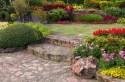 colorful flower garden