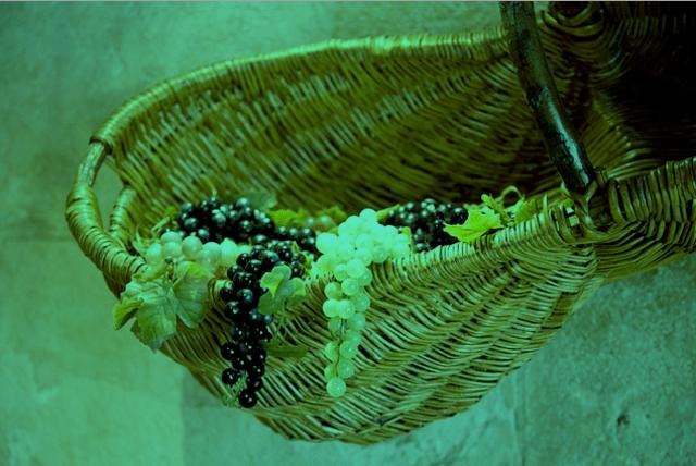 fruit-cart-cornucopia