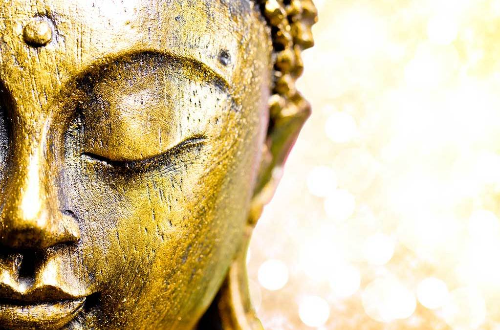 Buddha and the wisdom of taming…