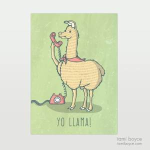 Llama, Yo Llama you do you