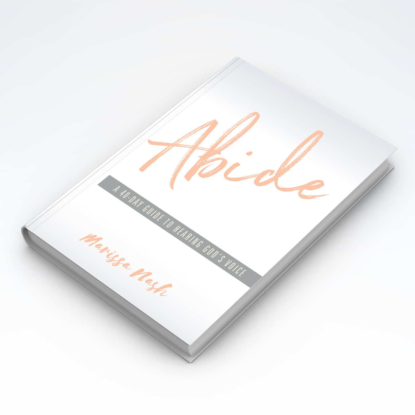 cover_abide on white