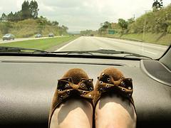 Road Trip feet