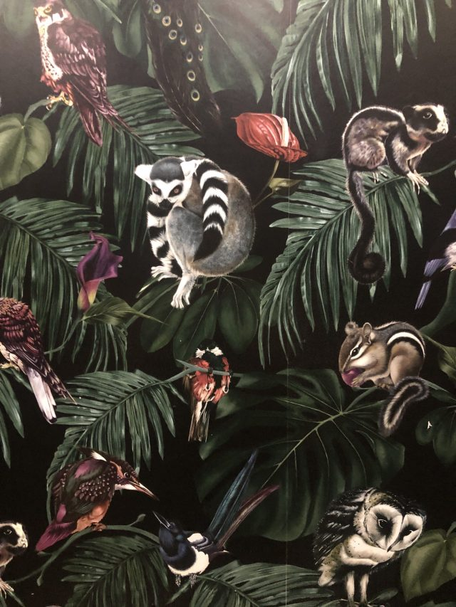 Jungle Themed wallpaper in the elevator of the Perry Lane Hotel