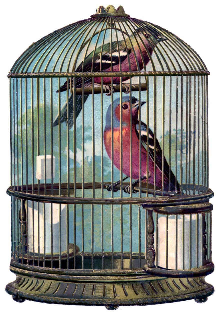 bird+cage+vintage+image+GraphicsFairy004sm