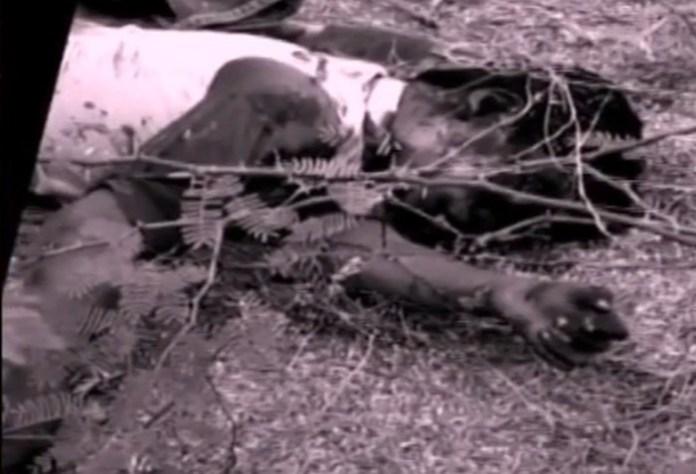டிக்டாக்கில் கலக்கிய சிறுவன் படுகொலை