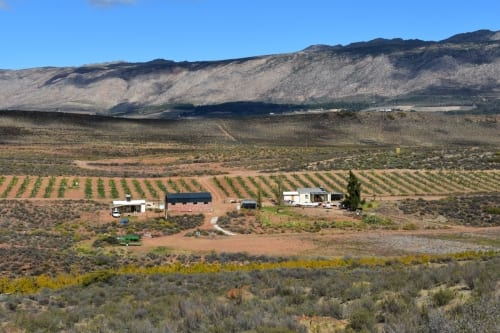 koo-valley-farming