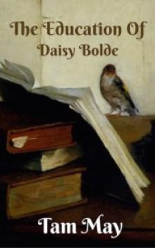 TEDB Book Cover v1 NaNo