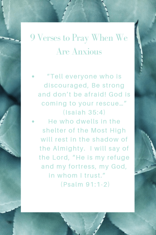 33 Verses to Pray Over When We Are Anxious2.png