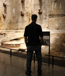 Silhouette of man looking at a museum artifact.