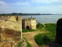 TAMOiOVDE-Smederevska tvrđava-IMGP1096