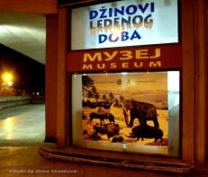 Muzej-214_6470