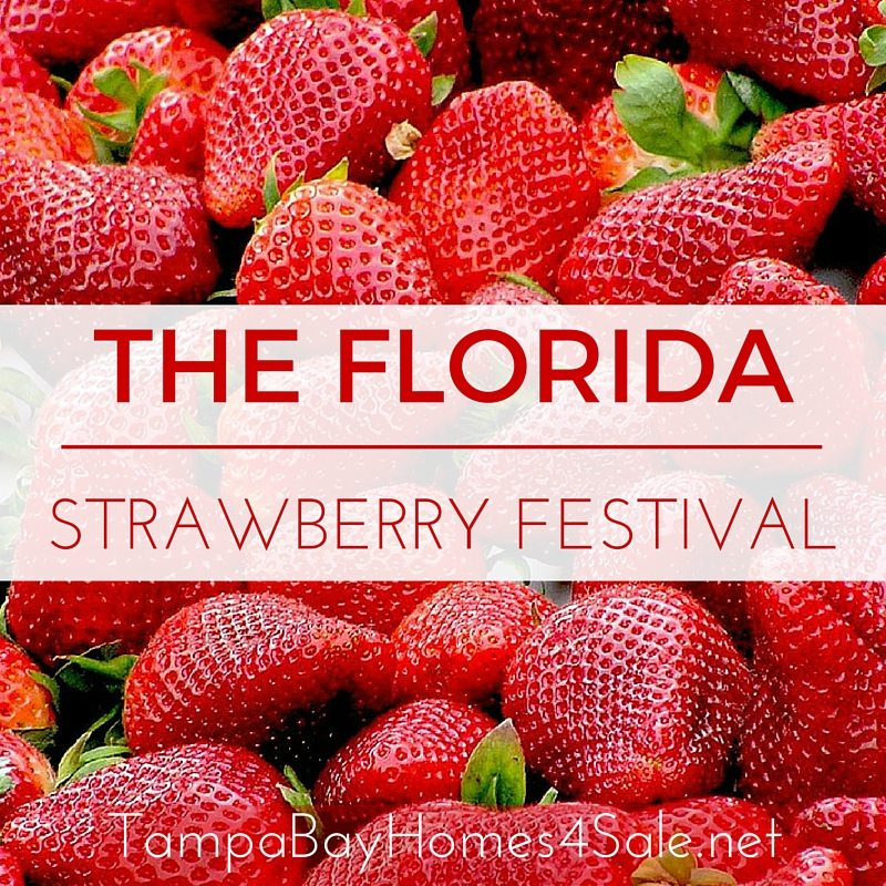 Florida Strawberry Festival - Plant City Homes for Sale