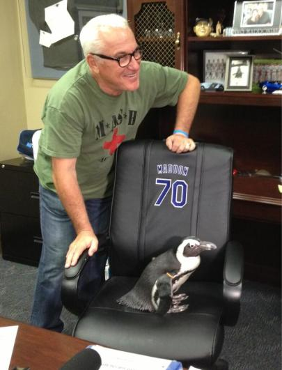 """I wanted the players to chill out a little bit. ...get it?"" -Joe Maddon (Photo courtesy of the Tampa Bay Rays)"