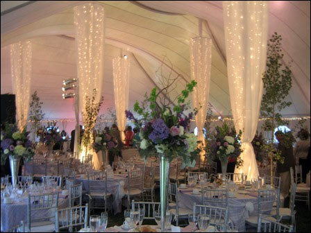 Purple and silver tent drape with lights columns