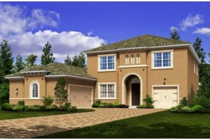 Estates At Ware Ranch Brandon Florida New Construction