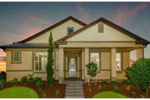 FishHawk Ranch in Lithia Florida New Construction From $229,990