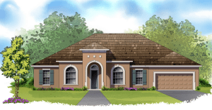Brooker Reserve Brand New David Weekly Single Family Homes Brandon Florida 33511