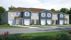 Osprey Lakes  Riverview Florida New Town Homes Community