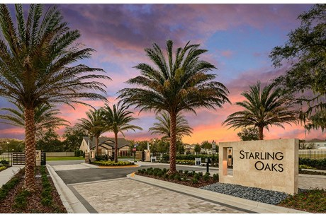 Pulte Homes Starling Oaks Riverview Florida New Homes