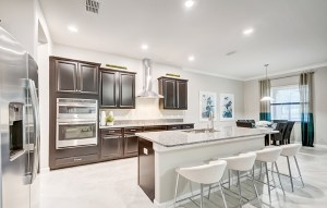 Read more about the article Free Service for Home Buyers   Crystal Lagoon Southshore Bay Wimauma Florida Real Estate   Wimauma Realtor   New Homes Communities