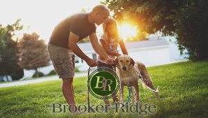 Brooker Ridge New Home Community Brandon Florida