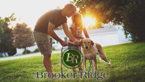 33510/33511 New Home Communities  Brandon Florida