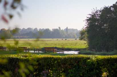 Henny Swan Garden Shoot