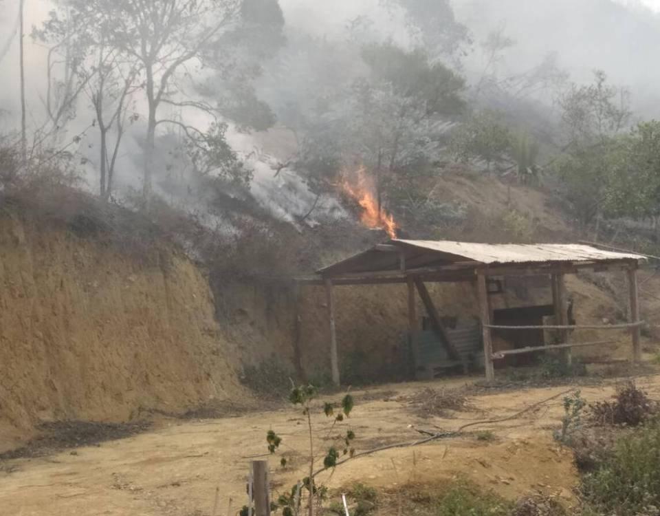 Urge la activación del comando unificado contra incendios forestales en Bailadores