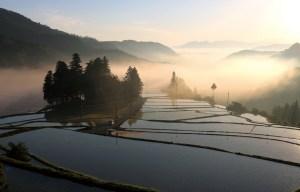 蔵川の棚田