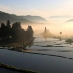蔵川(くらかわ)| 愛媛県大洲市