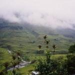 「フィリピン・ルソン島」 撮影者:相川民蔵 撮影地:フィリピン・ルソン島 コルディレラ山脈