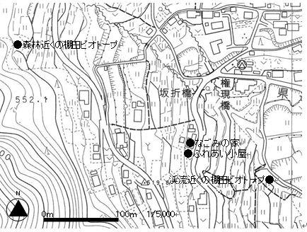 sakaori2
