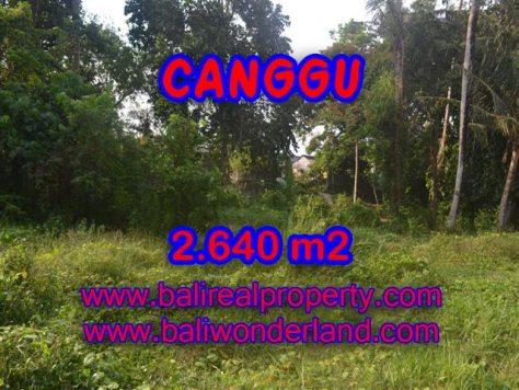 Tanah di Canggu dijual 2,640 m2 di Brawa