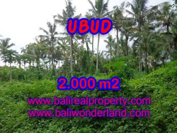 Murah ! Tanah di UBUD Bali Dijual Rp 2.850.000 / m2 - TJUB397